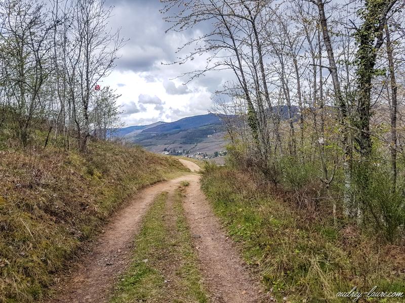 Source-de-Fayolles-balade randonnée nature beaujolais proche lyon