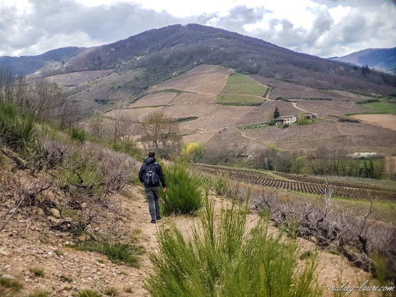 Source-de-Fayolles-balade randonnée nature beaujiolais proche lyon