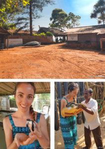 centre-conservation-tortues-blog-voyage-sri-lanka-